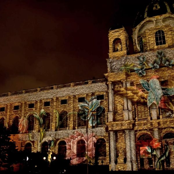 Projection Mapping Wien Haselbusch 4youreye Lichttapete